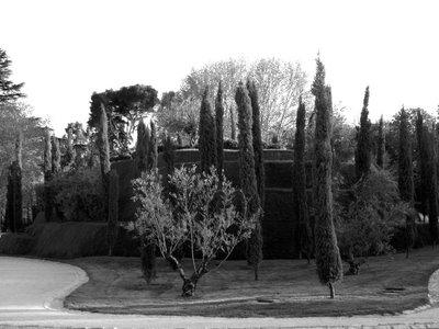 070419-bosque-del-recuerdo-monticulo.jpg
