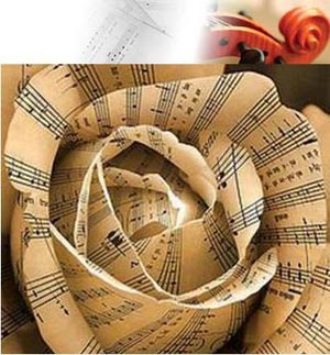 flor-musical.jpg