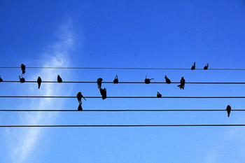 vida-musica.jpg