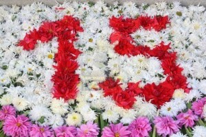 2675957-number-15-with-flowers